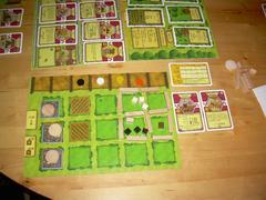 AgricolaFamilyMyBoard.jpg