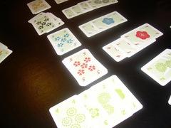Hanabi20111112.JPG