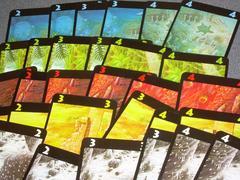 LC4cards.jpg