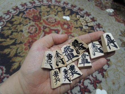 KaiShogi20150104.JPG