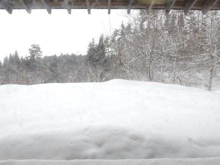 Snow20190106.JPG