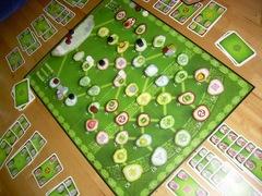 KeltisEx20100313.jpg