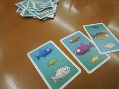 Piranhas20130818.JPG