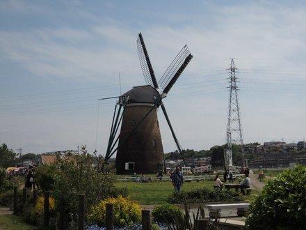 DutchWindmillLiefde20210425.JPG